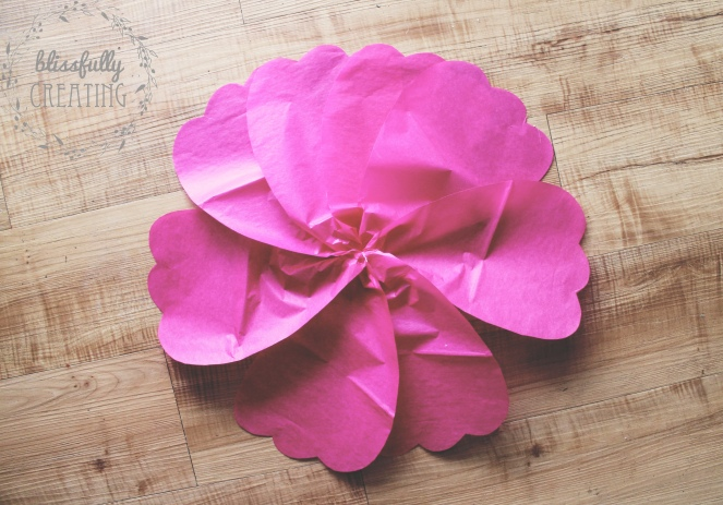 and-so-she-grew-to-five-large-dark-pink-flower