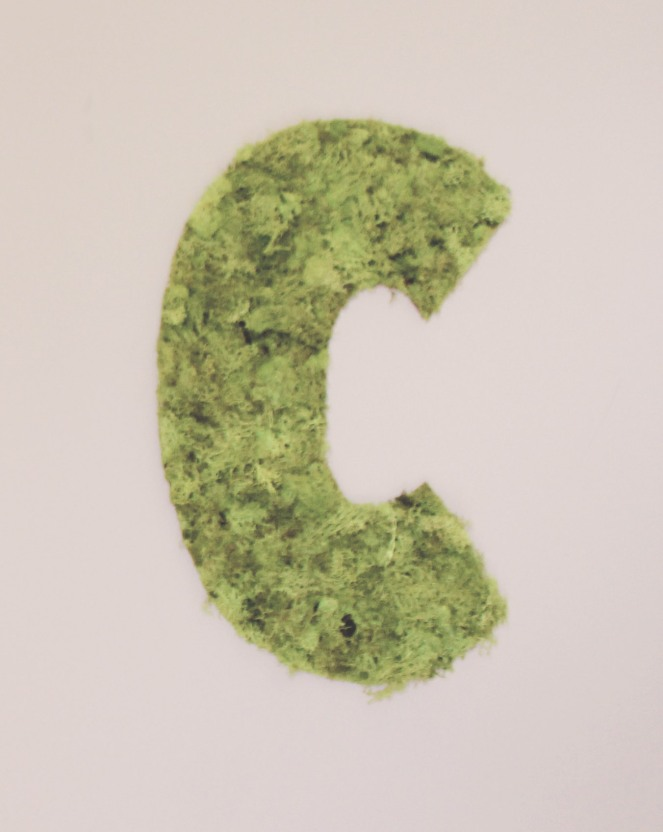 {quick crafts} mossy letters4
