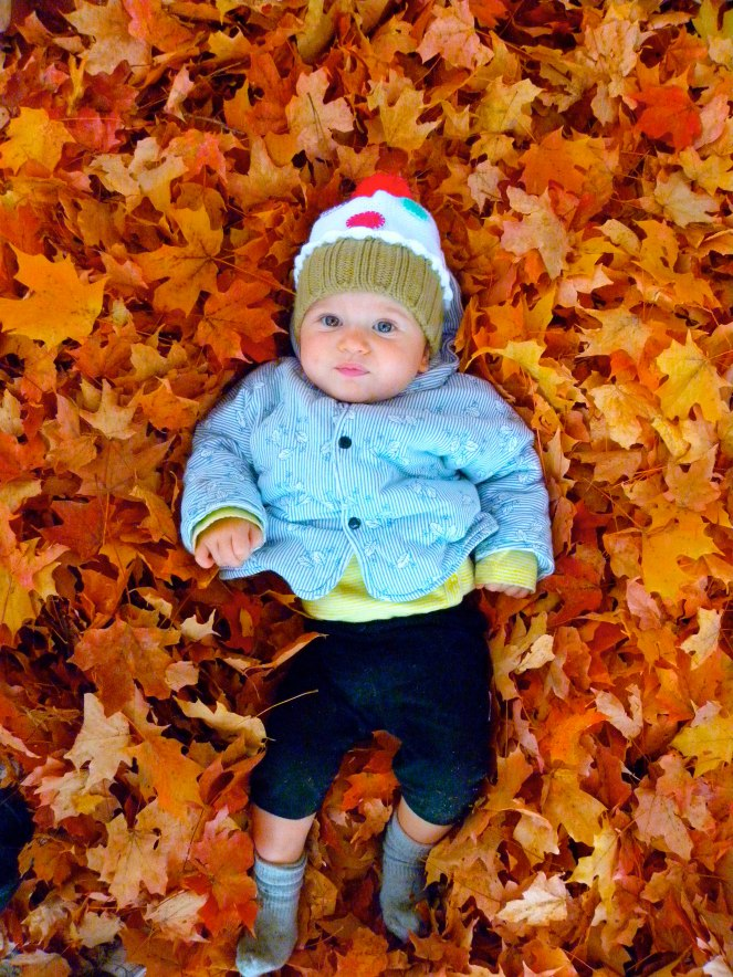 {five things to do in the fall} leaf pile3
