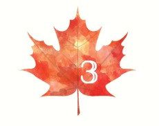 {five things to do in the fall} leaf3